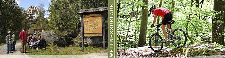 Freizeit Bayerischer Wald